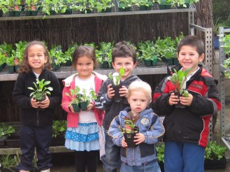 020910. snl-features. photo. rakesh krishnan. te kohanga reo kakariki, glen eden. second photo - children get to do a whole lot of activities like growing their own fruit and vegetables. publication wel. publication date 03/09/10. 02-AUK-kohanga1.