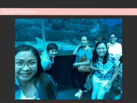 sea-aquarium-3