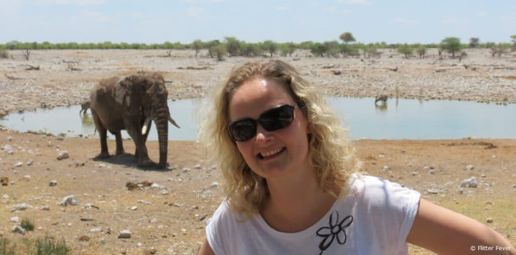 Elephants elephant Okaukeujo Camp waterhole Etosha Namibia