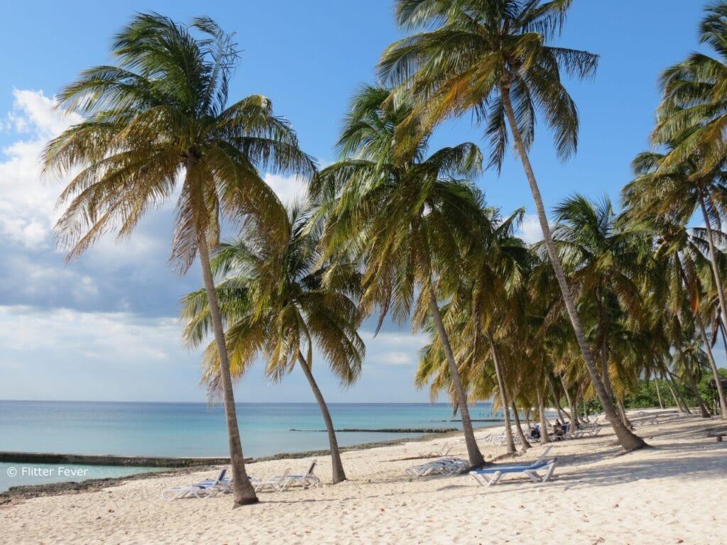 Maria La Gorda beach with palm trees Cuba