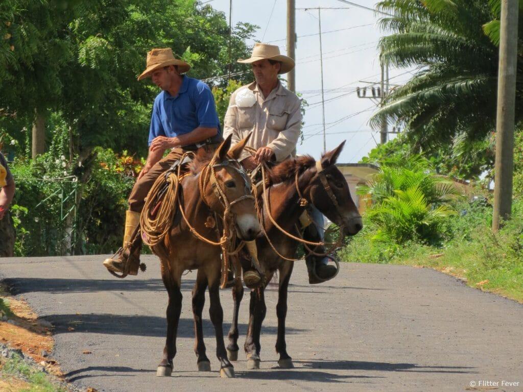 Cowboys in Vinales