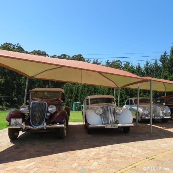 Pretty old cars outside @ Bilton Wines, Stellenbosch