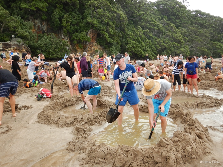 Everybody is digging at Hot Water Beach