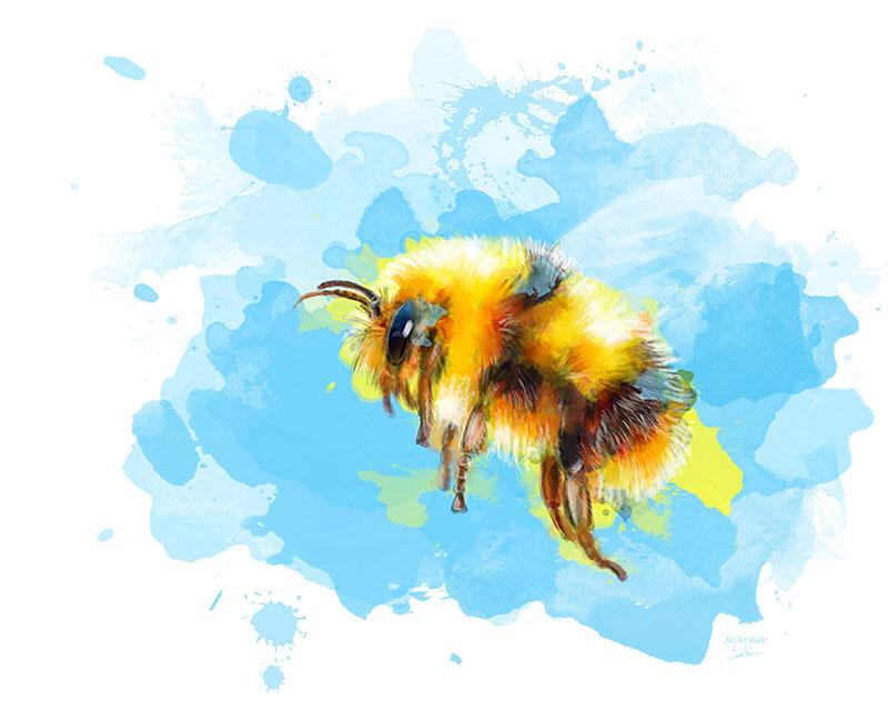 Bumblebee1 small