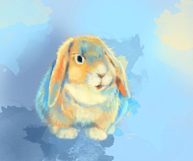 Bunny Rabbit Winter Fluff digital painting portfolio