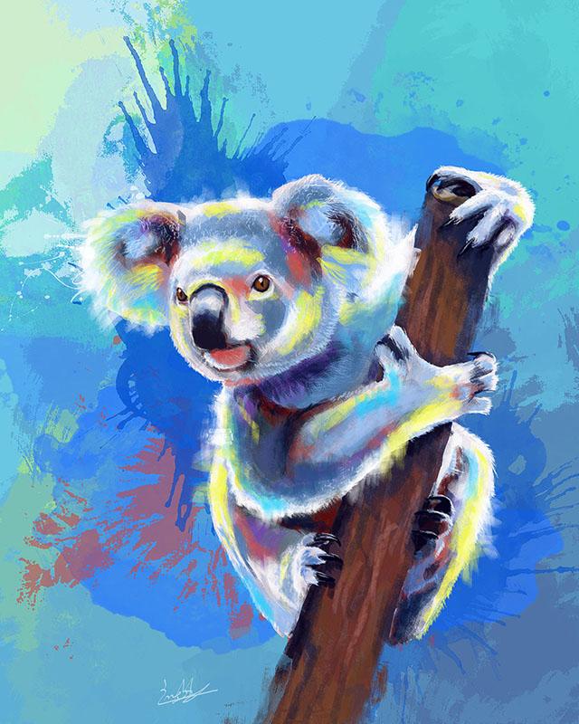 koala1 small