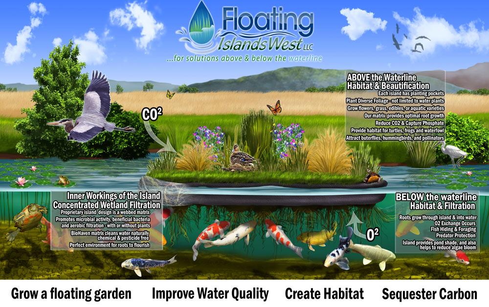 Pond Island Long Design