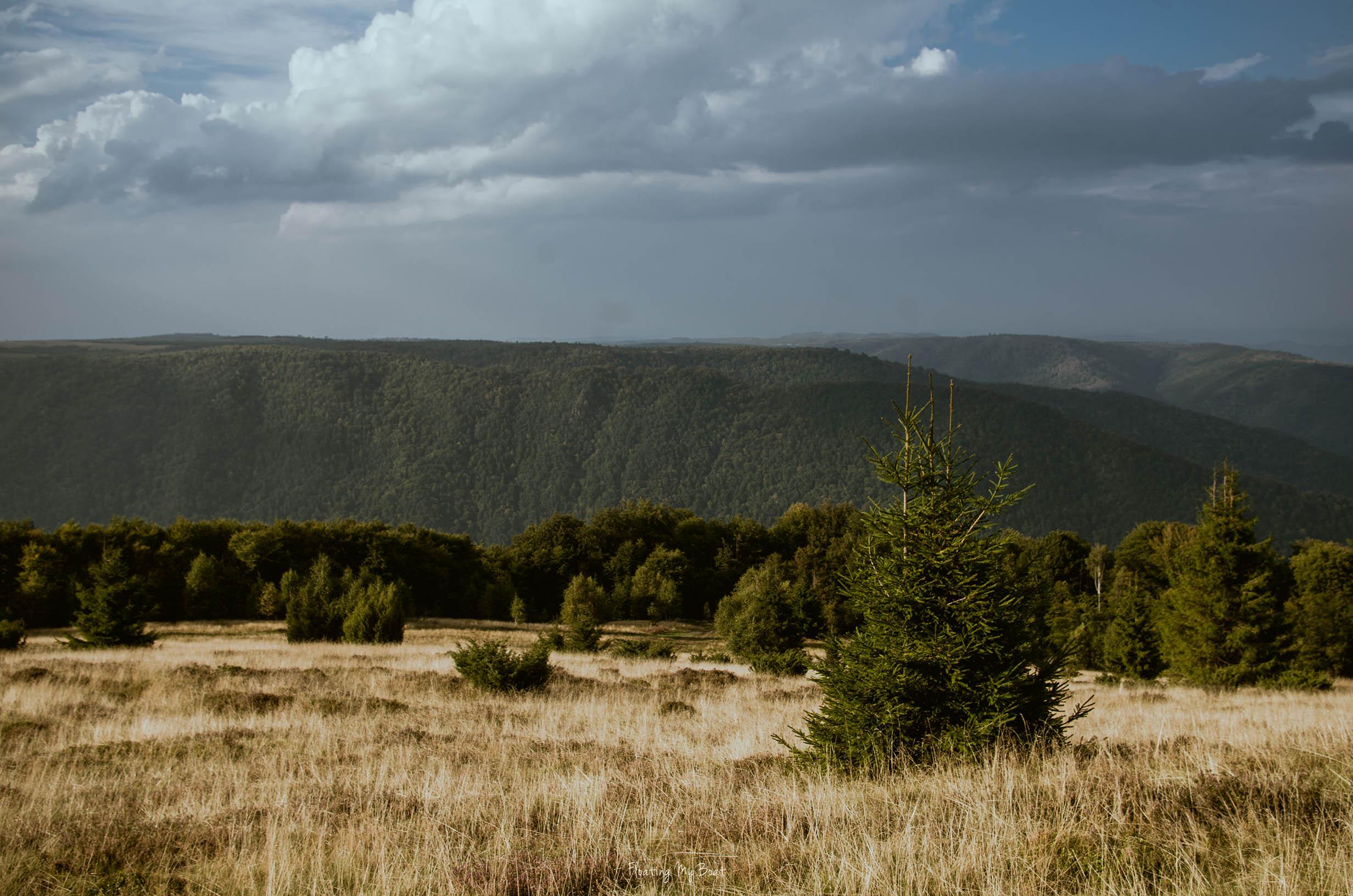 tarnita-lake-trekking-romania