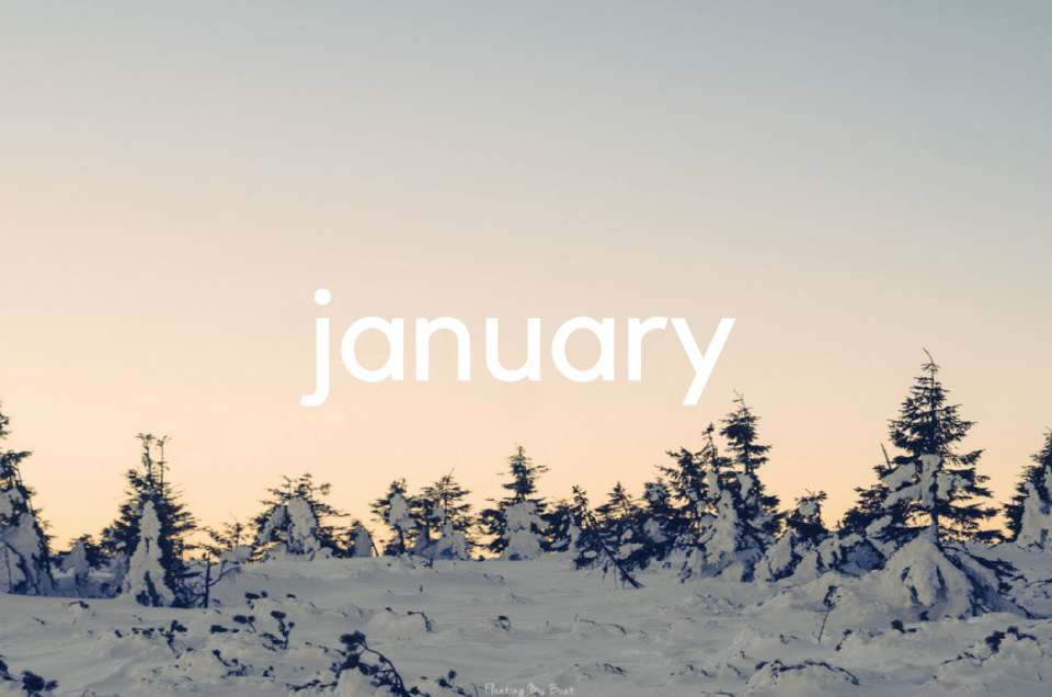 Month in review – January