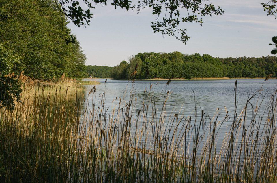 Majówka w Wielkopolskim Parku Narodowym - fotorelacja