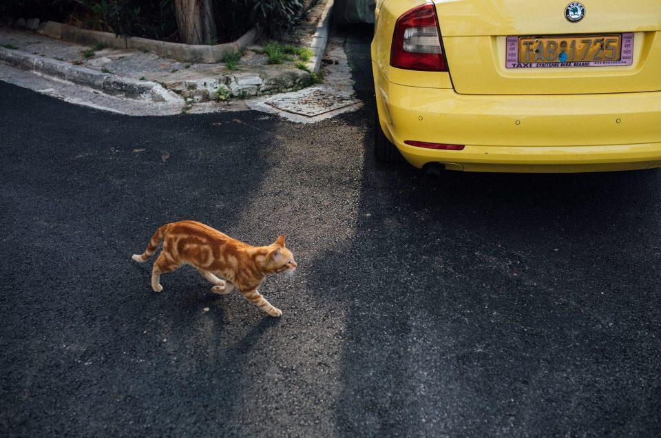 Co zobaczyć w Atenach – Przewodnik Niepoprawny po najbardziej kontrastowej stolicy w Europie