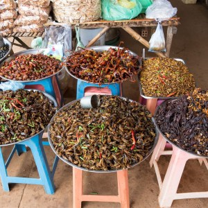 Cambodian Insects on the Floating Village Street Food Tour