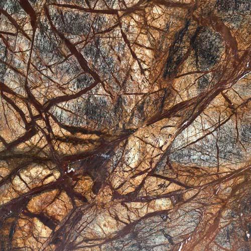 Rainforest Brown Marble