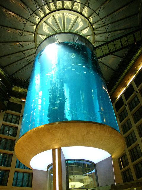 Aquarium-In-Radisson-Sas-Hotel-12