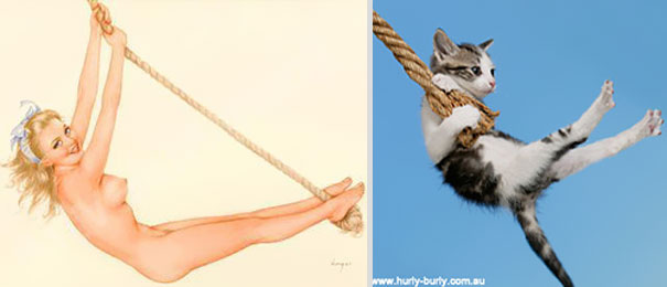 cats-that-look-like-pin-up-girls-18