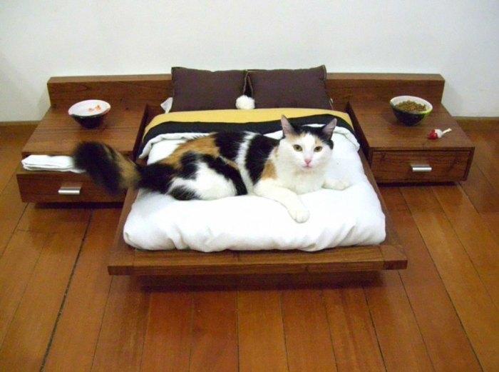貓咪專屬的大床
