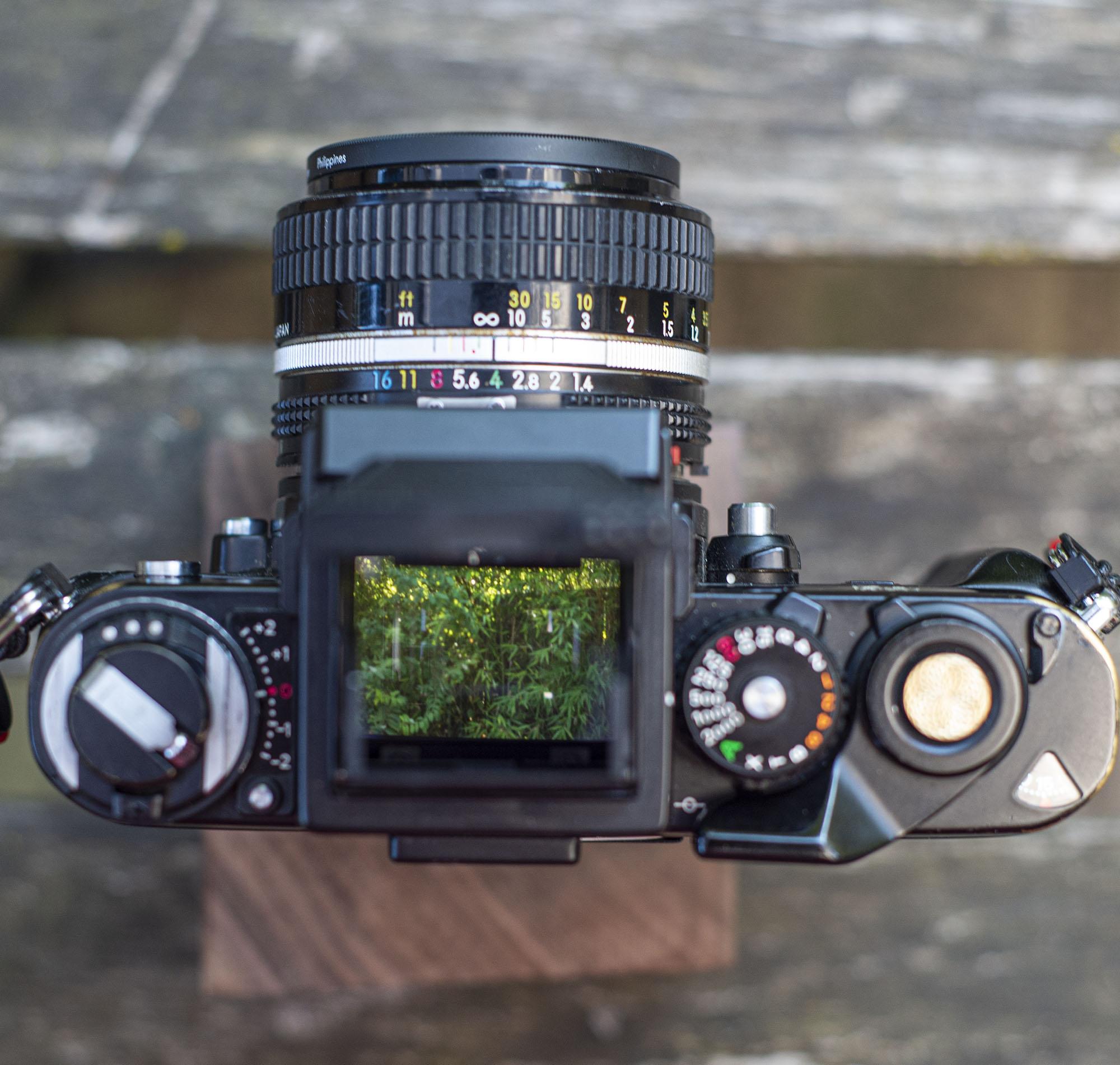 View through the waist level finder on a Nikon F3