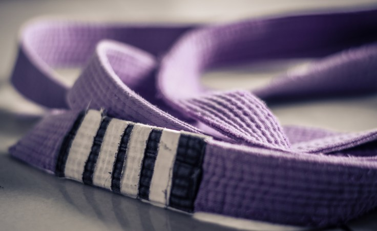 BJJ-belt-purple-belt.jpg