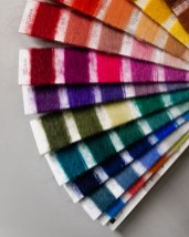 Värikartta, kuva: Ida Holopainen