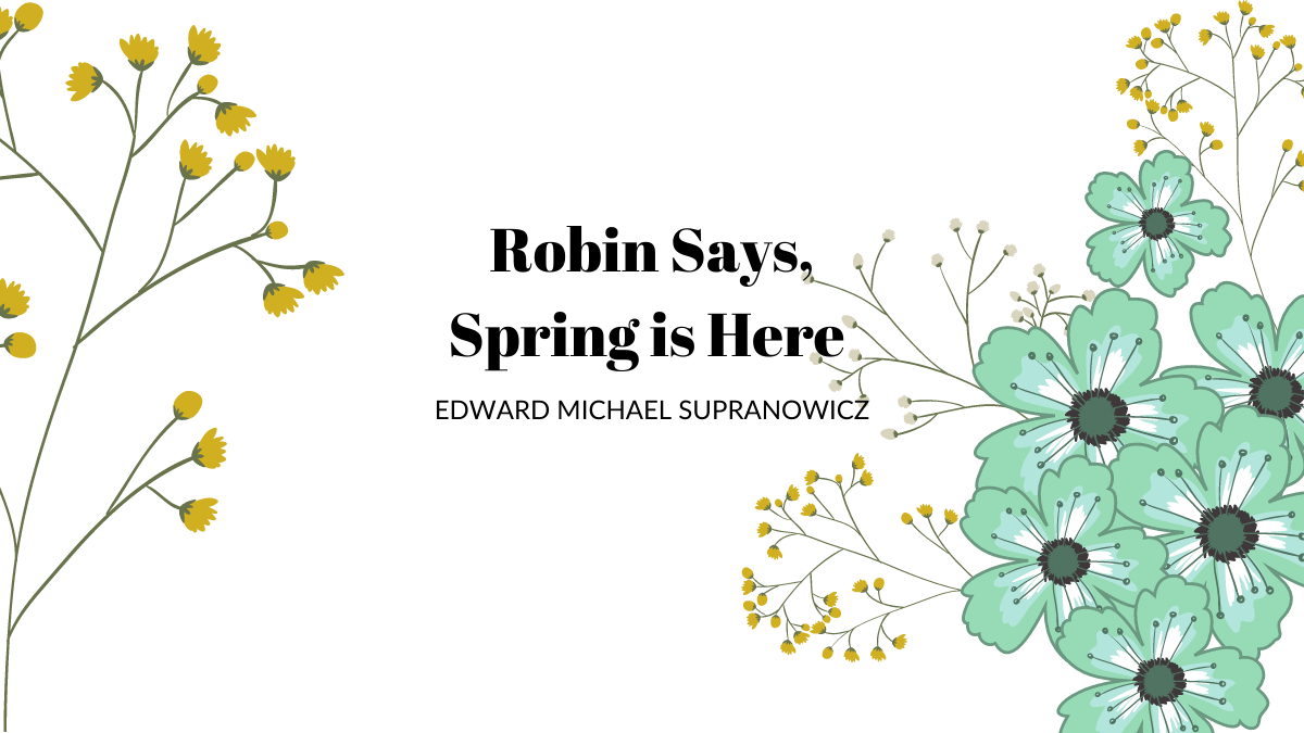 Robin Says, Spring is Here By Edward Michael Supranowicz