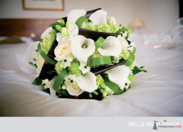Arrangement with Zantedeschia or Calla-lillies.