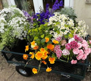 Trolley full of summer wedding flowers.  3 DIY Buckets