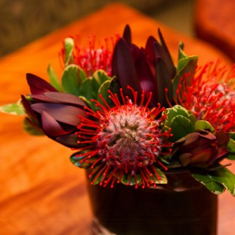 Small tropical arrangement of proteas & leucadendron