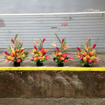 4 tropical arrangements on the loading dock