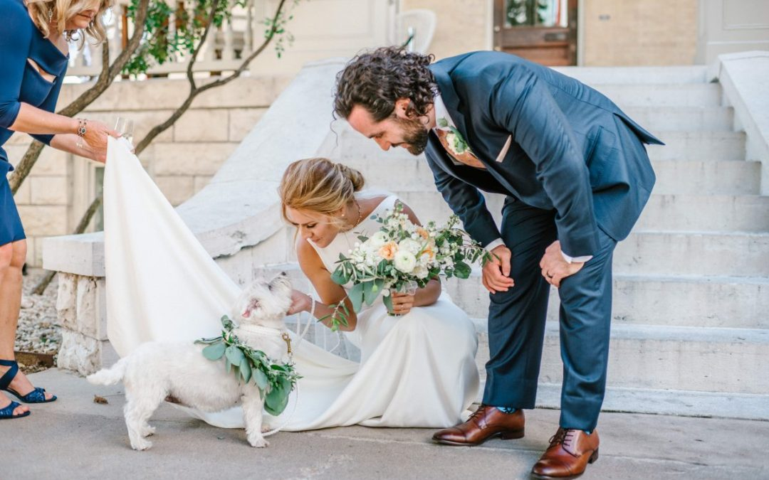 wedding pet with bride and groom