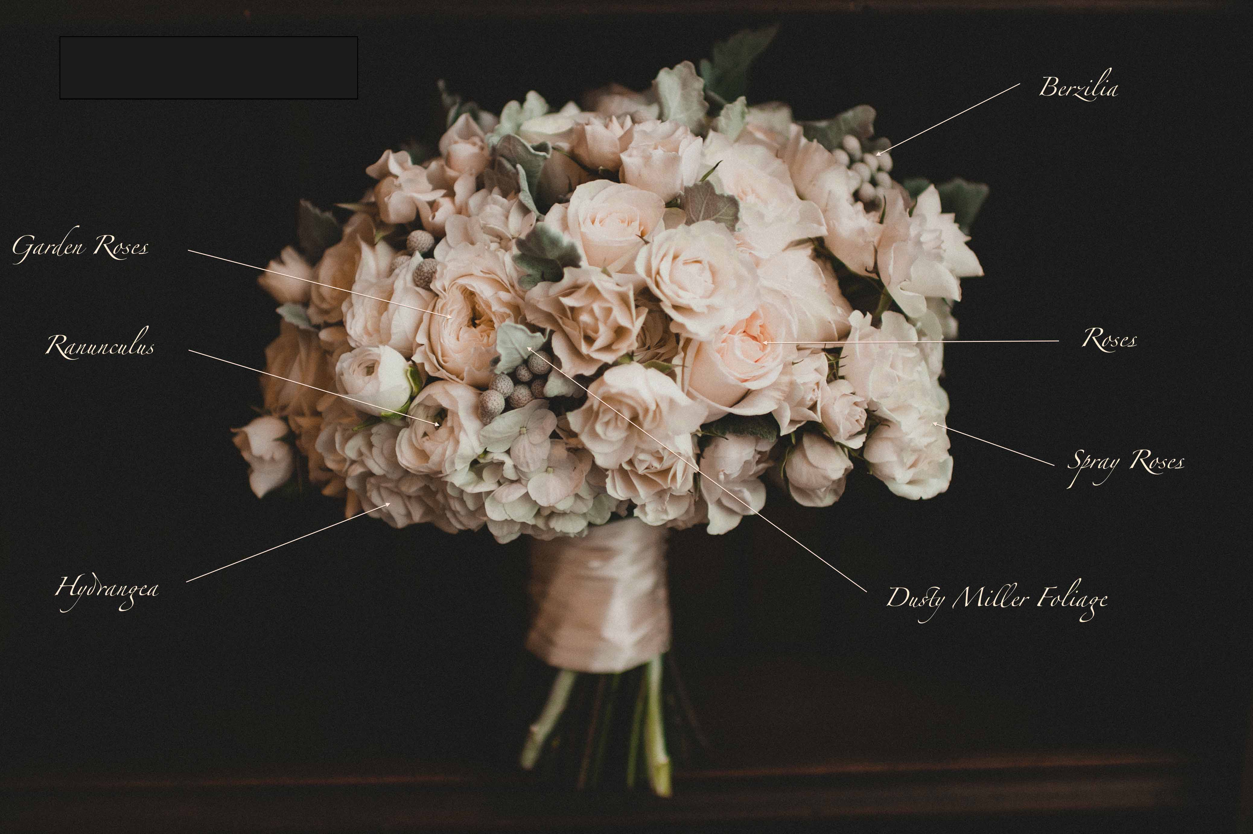White and grey winter bridal bouquet recipe of white roses, spray roses, berzillia, ranunculus, Dusty Miller - Bridal Bouquet Pricing by Flora Nova Design