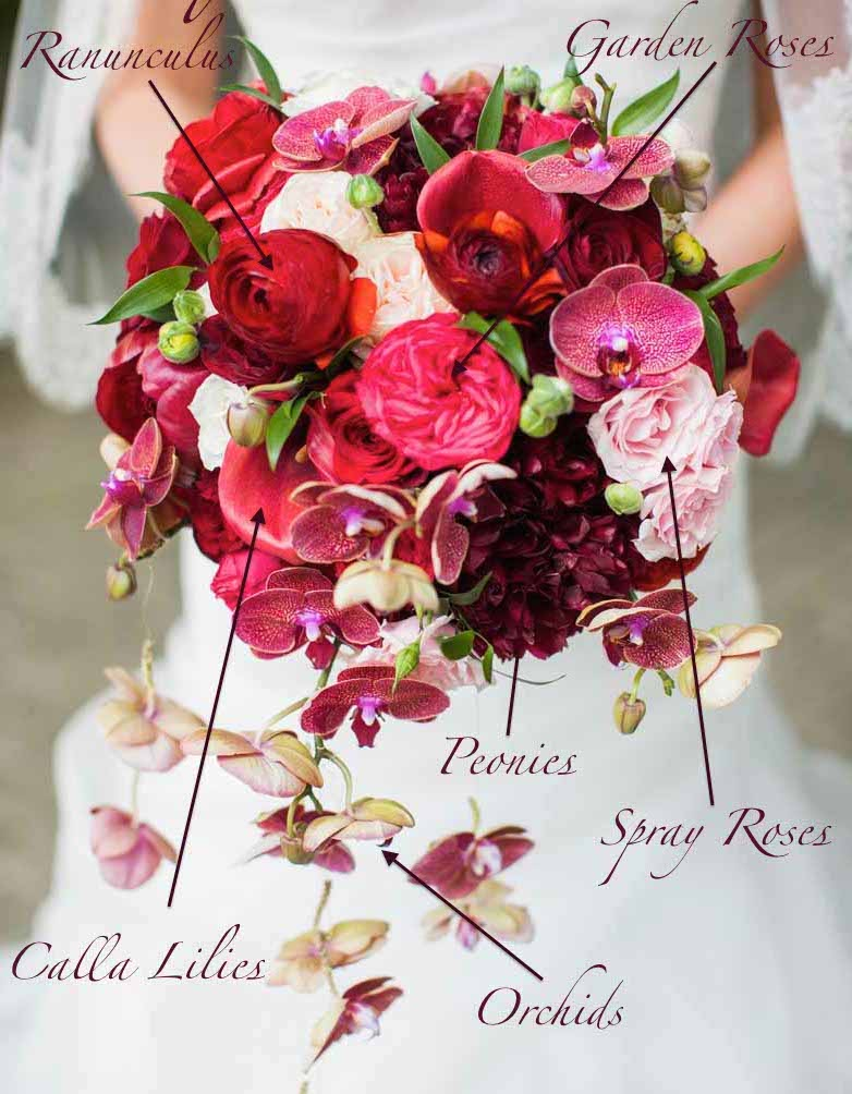 Bridal Bouquet flowers and recipe of red garden roses, burgundy peonies, red orchids - by Flora Nova Design
