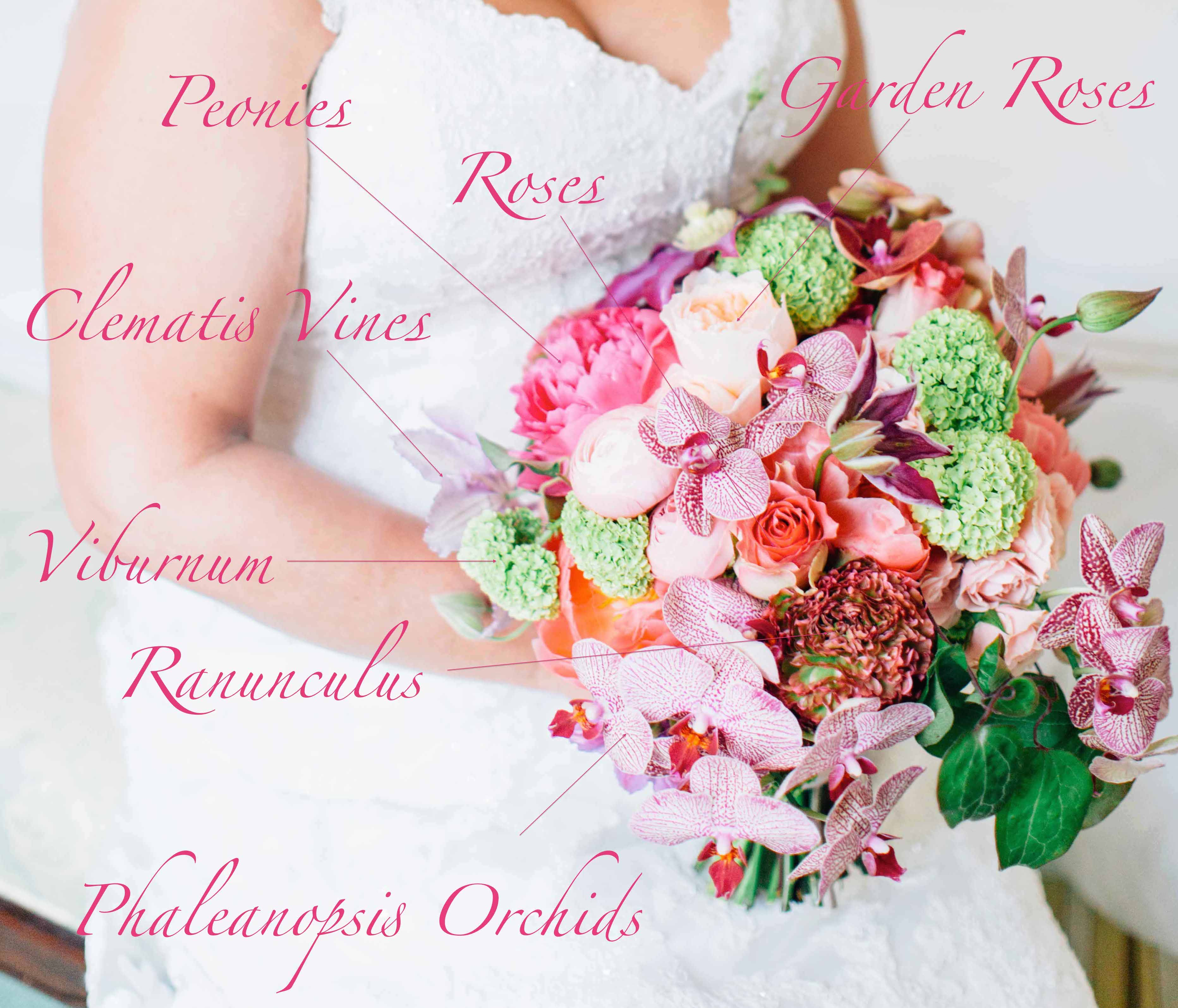 Bridal bouquet flowers with recipe of pink roses, orchids, ranunculus, viburnum