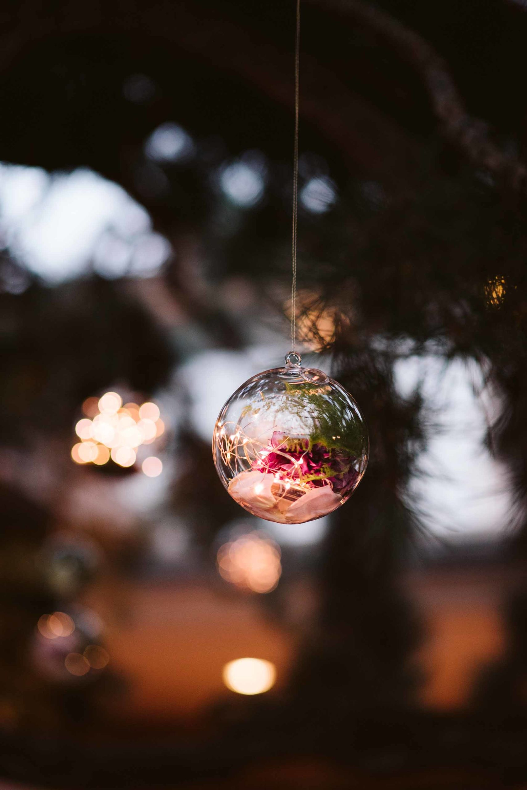 Round glass globes filled with fairy lights and roses suspended in a tree