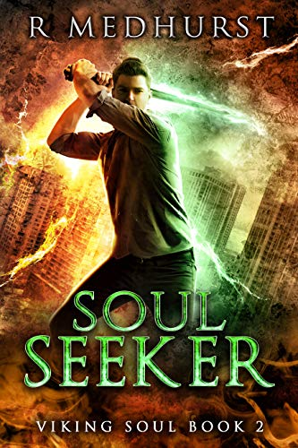 book cover for Viking Soul 2 - Soul Seeker - new title by Rachel Medhurst