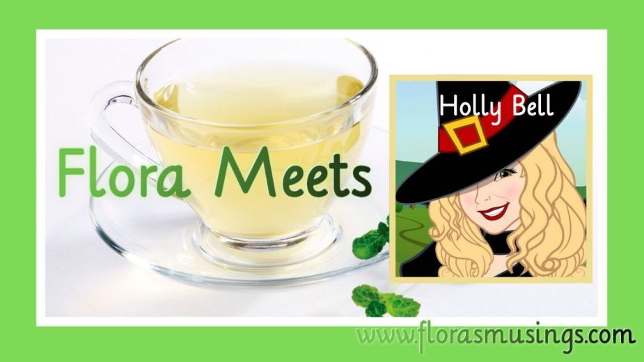 Featured Image for Author Q&A with Holly Bell