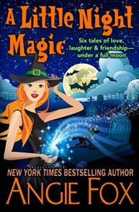 Mini Review: A Little Night Magic by Angie Fox