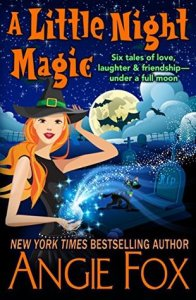 Book cover for A Little Night Magic by Angie Fox.