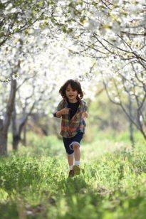 blurred-background-boy-child-1416736