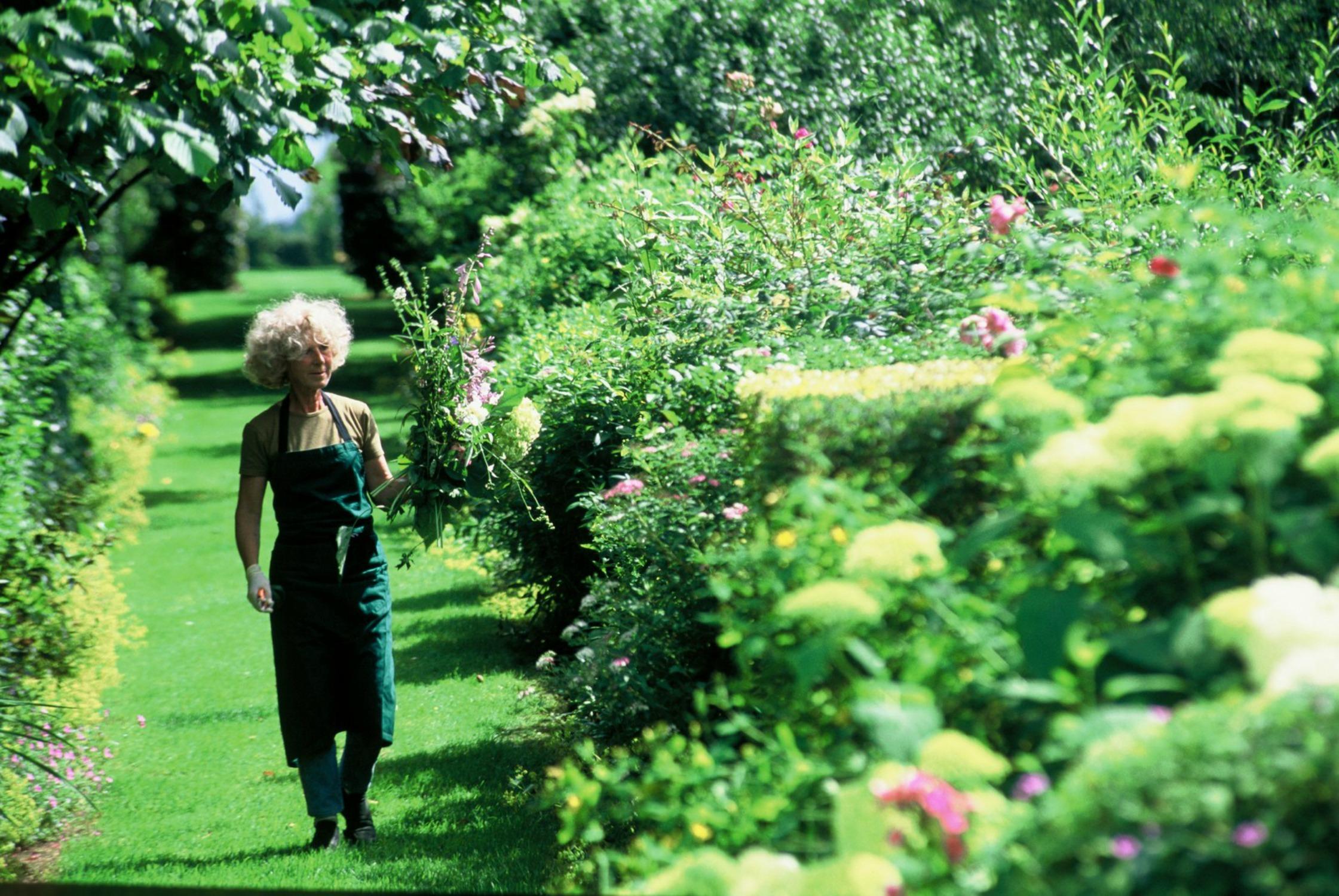 Un Jardin en Picardie : Maizicourt