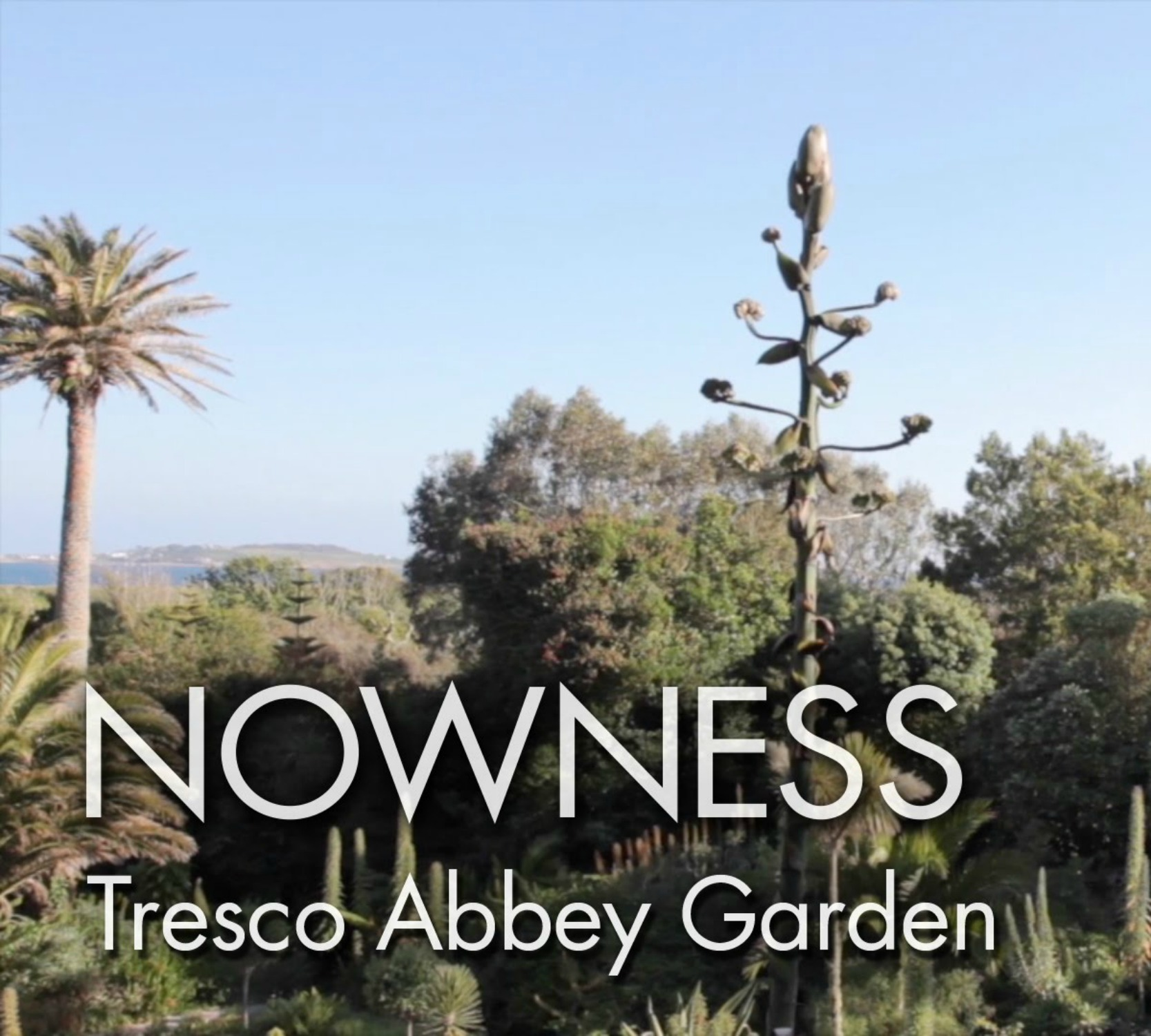 """Tresco Abbey Garden"" by Howard Sooley"