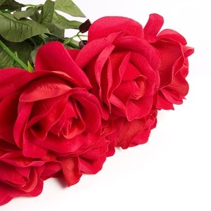 bouquet de roses rouges maroc