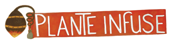 plante_infuse