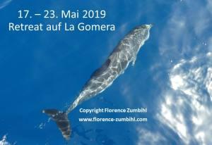 Ruf des Meeres - Ozeanisches Bewusstsein - zumbihl florence fleckendelfin la gomera