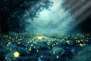 Transformationswelle - night 3078326 1920