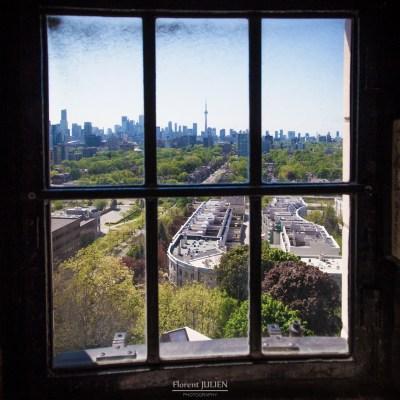 Throught the window