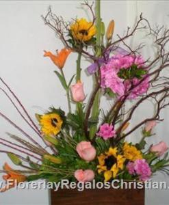 Arreglo de tronco y flores surtidas - E58