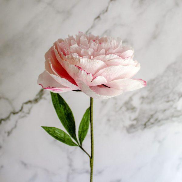 peonía de papel realista, flores para siempre