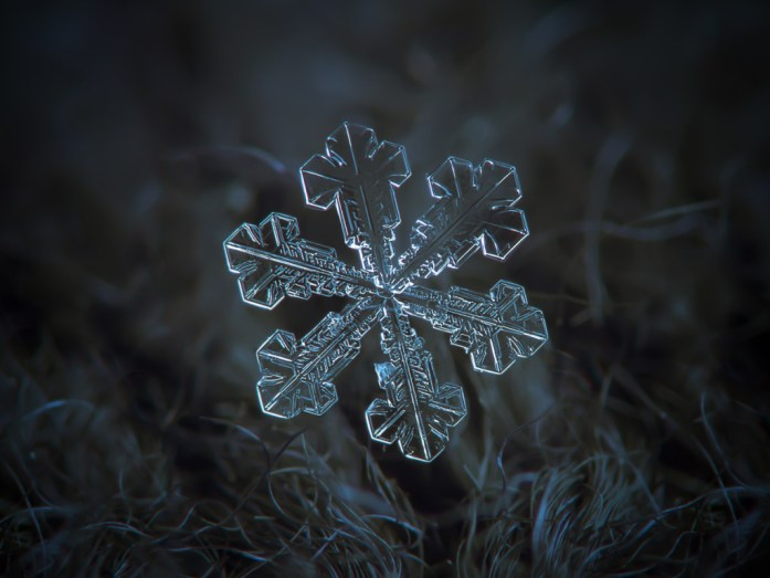 close-up-of-a-single-snowflake