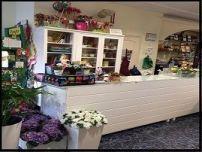 1-tienda de flores zaira