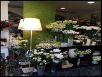 3.-tienda de flores zaira